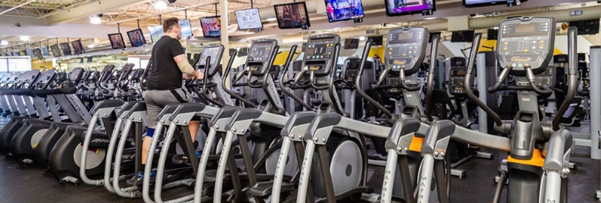 rows of cardio machines in modern gym
